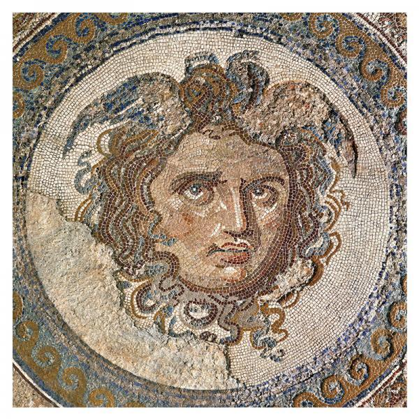 The Medusa Mosaic